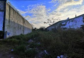 Foto de terreno industrial en venta en carretera veracruz-xalapa kilometro 10, fraccionamiento campestre , las bajadas, veracruz, veracruz de ignacio de la llave, 11504815 No. 01