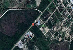 Foto de terreno habitacional en venta en carretera victoria san fernando , méxico, san fernando, tamaulipas, 6248584 No. 01
