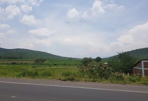 Foto de terreno habitacional en venta en carretera , villa corona centro, villa corona, jalisco, 5563292 No. 02
