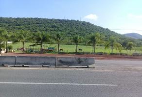 Foto de terreno habitacional en venta en carretera villa corona- cocula , acatlan de ju?rez, acatl?n de ju?rez, jalisco, 3013327 No. 10