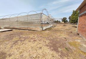 Foto de terreno habitacional en venta en carretera yecapixtla ocuituco , ocuituco, ocuituco, morelos, 0 No. 01