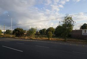 Foto de terreno habitacional en venta en carretera zacatecas , el saucito, san luis potosí, san luis potosí, 19422082 No. 01