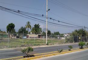 Foto de terreno comercial en venta en carretera zapata tezoyuca , el zapote, emiliano zapata, morelos, 17546005 No. 01