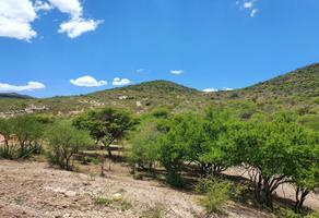 Foto de rancho en venta en carreteta sierra gorda , tolimán, tolimán, querétaro, 16674874 No. 01