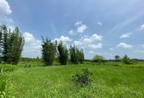 Foto de terreno habitacional en venta en carrtetera federal ver-xal , el pando, veracruz, veracruz de ignacio de la llave, 5816111 No. 01