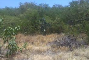 Foto de terreno habitacional en venta en Abasolo Centro, Abasolo, Nuevo León, 8361599,  no 01