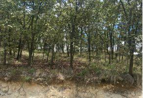 Foto de terreno habitacional en venta en Ciudad Bugambilia, Zapopan, Jalisco, 21360451,  no 01