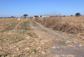 Foto de terreno comercial en venta en Los Cedros, Ixtlahuacán de los Membrillos, Jalisco, 6393482,  no 01