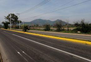 Foto de terreno comercial en venta en San Sebastián El Grande, Tlajomulco de Zúñiga, Jalisco, 21476662,  no 01