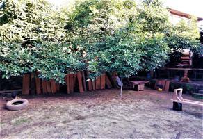 Foto de terreno habitacional en venta en cedro , pátzcuaro centro, pátzcuaro, michoacán de ocampo, 0 No. 01