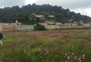 Foto de terreno habitacional en venta en cedro y cruz de mayo , tlalmanalco, tlalmanalco, méxico, 13634629 No. 01