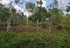 Foto de terreno habitacional en venta en cenote san justo manzana 2 lt 8 , leona vicario, felipe carrillo puerto, quintana roo, 0 No. 01