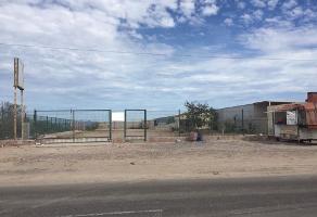 Foto de terreno comercial en venta en  , centenario, la paz, baja california sur, 4661746 No. 01
