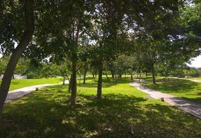 Foto de terreno habitacional en venta en  , central de abasto, mérida, yucatán, 0 No. 01