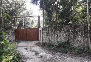 Foto de terreno comercial en venta en central vallarta , puerto morelos, benito juárez, quintana roo, 10467617 No. 01