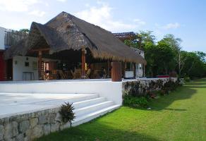 Foto de terreno comercial en venta en central vallarta , puerto morelos, benito juárez, quintana roo, 3460339 No. 01