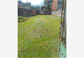 Foto de terreno habitacional en venta en centro 0, nogales centro, nogales, veracruz de ignacio de la llave, 0 No. 01