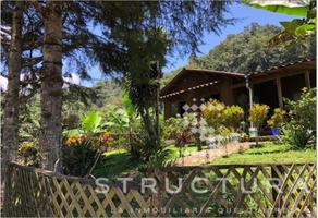 Foto de rancho en venta en centro 1, coatepec centro, coatepec, veracruz de ignacio de la llave, 18221046 No. 01