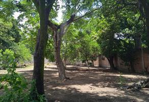 Foto de terreno comercial en venta en centro 12, itzamatitlán, yautepec, morelos, 0 No. 01