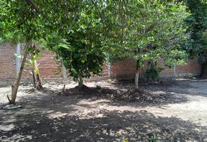Foto de terreno habitacional en venta en centro 5, itzamatitlán, yautepec, morelos, 0 No. 01