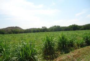 Foto de rancho en venta en centro 789, tehuixtla, jojutla, morelos, 6059325 No. 01
