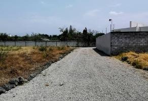 Foto de terreno habitacional en venta en centro , centro jiutepec, jiutepec, morelos, 0 No. 02