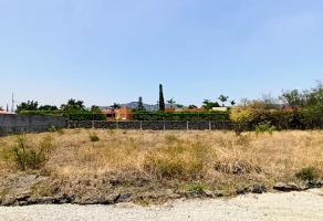 Foto de terreno habitacional en venta en centro , centro jiutepec, jiutepec, morelos, 0 No. 01