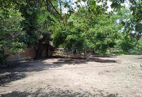 Foto de terreno habitacional en venta en centro , itzamatitlán, yautepec, morelos, 0 No. 01