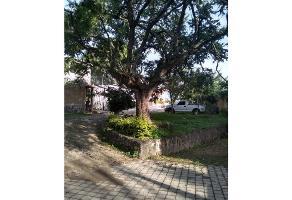 Foto de terreno habitacional en venta en  , centro jiutepec, jiutepec, morelos, 10089245 No. 01
