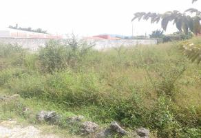 Foto de terreno habitacional en venta en  , centro jiutepec, jiutepec, morelos, 11735133 No. 01