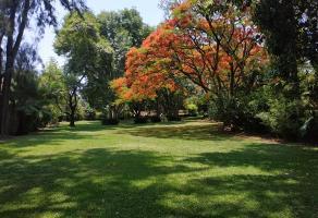 Foto de terreno habitacional en venta en  , centro jiutepec, jiutepec, morelos, 15380261 No. 01