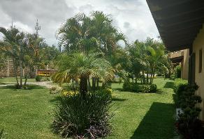 Foto de casa en renta en  , centro jiutepec, jiutepec, morelos, 8298659 No. 01