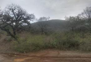 Foto de terreno habitacional en venta en  , centro, landa de matamoros, querétaro, 16709980 No. 01