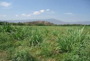 Foto de rancho en venta en centro o, tehuixtla, jojutla, morelos, 6224490 No. 01