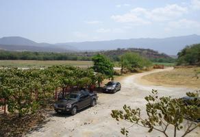 Foto de terreno comercial en venta en centro oo, tehuixtla, jojutla, morelos, 5966202 No. 01