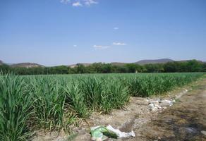 Foto de rancho en venta en centro oo, tehuixtla, jojutla, morelos, 6233928 No. 01