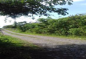 Foto de terreno habitacional en venta en centro , santa cecilia, comala, colima, 16941000 No. 01