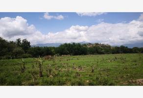 Foto de rancho en venta en centro , tehuixtla, jojutla, morelos, 0 No. 01