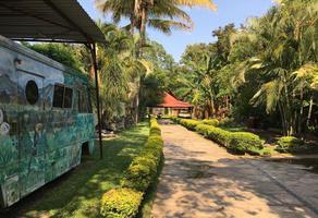 Foto de terreno comercial en venta en centro , tetecala, tetecala, morelos, 20092342 No. 01