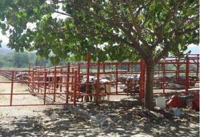 Foto de terreno comercial en venta en centro xx0, tehuixtla, jojutla, morelos, 0 No. 01