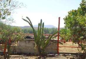 Foto de terreno comercial en venta en centro xxa, tehuixtla, jojutla, morelos, 14843126 No. 01