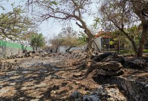Foto de terreno habitacional en venta en  , centro, yautepec, morelos, 15937028 No. 01