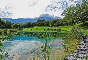 Foto de terreno habitacional en venta en cerrada bosque de cuitervo , bosque residencial, santiago, nuevo león, 13598153 No. 01