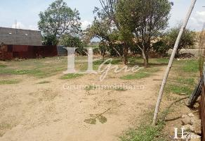 Foto de terreno habitacional en venta en cerrada de constitucion , san lorenzo cacaotepec, san lorenzo cacaotepec, oaxaca, 14264686 No. 01