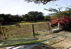 Foto de terreno habitacional en venta en cerrada del río , ticuman, tlaltizapán de zapata, morelos, 13021345 No. 01