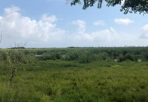 Foto de terreno comercial en venta en cerrada miramar , emiliano zapata sur, ciudad madero, tamaulipas, 0 No. 01