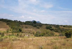 Foto de terreno habitacional en venta en  , cerrito colorado, querétaro, querétaro, 13794448 No. 01