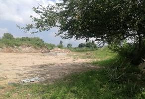 Foto de terreno habitacional en venta en  , cerrito de la reyna, tonal?, jalisco, 0 No. 01