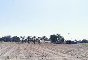 Foto de terreno habitacional en venta en cerrito , san sebastián el grande, tlajomulco de zúñiga, jalisco, 0 No. 01