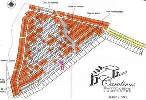 Foto de terreno comercial en venta en  , cerro de la pila, gómez palacio, durango, 11713049 No. 01